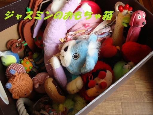 ジャスミンのおもちゃ 2