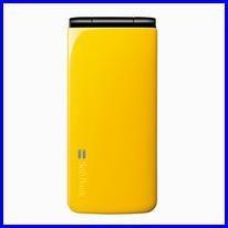 002P-yellow.jpg