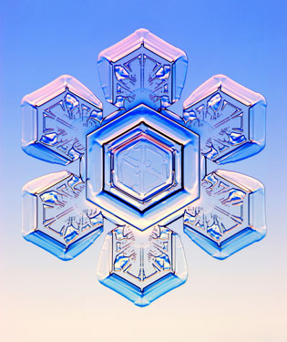 snow8.jpg