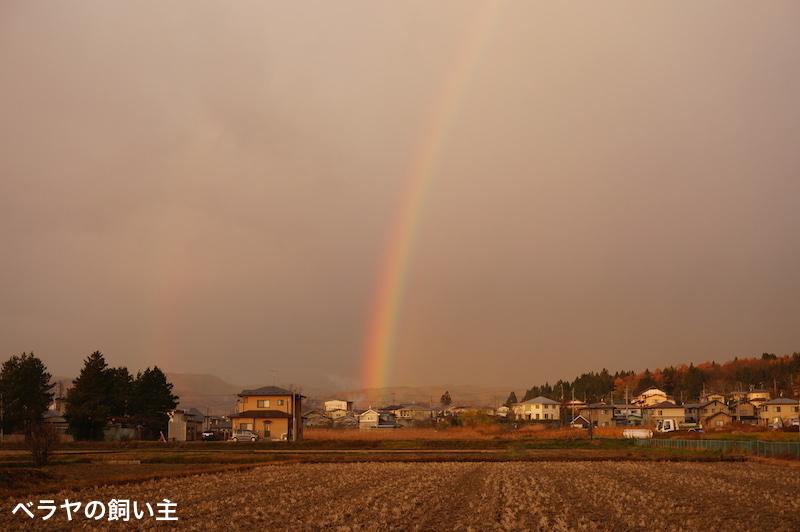 BNK_Rainbow_DSC03015.jpg