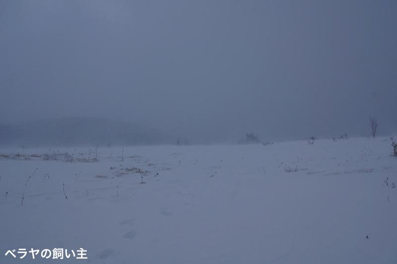 BNK_SNOW-1_DSC03541.jpg