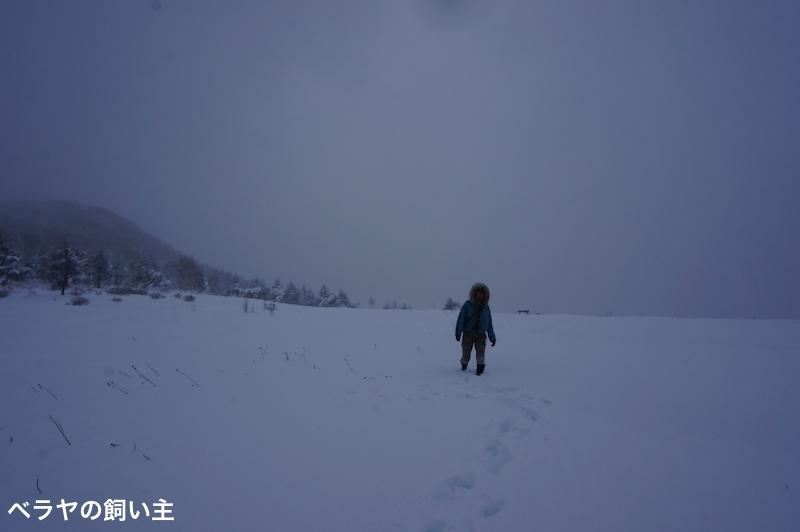 BNK_SNOW-3_DSC03558.jpg