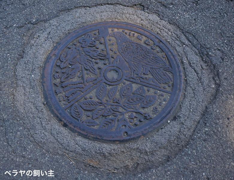 BNK_Tazawako_DSC02246.jpg