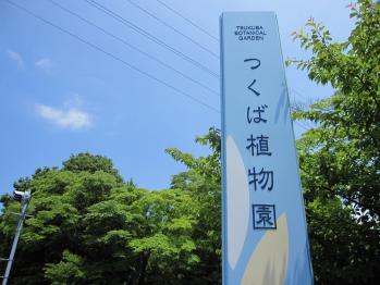 20100605つくば植物園01