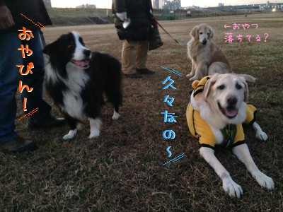 blog3_201401182252081e0.jpg