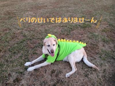 blog4_201401242303297aa.jpg
