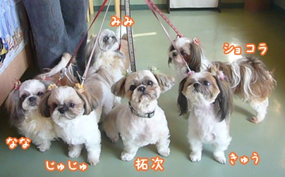 101228_mifami_san_03.jpg
