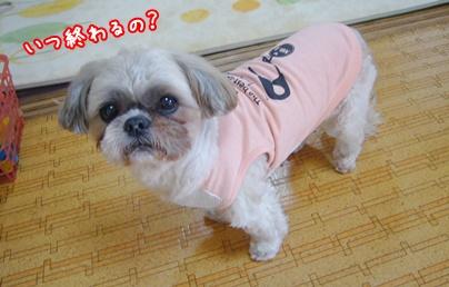 110107_takutaku_02.jpg