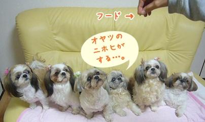 110111_mimifami_04.jpg
