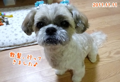 111111_taku_01.jpg