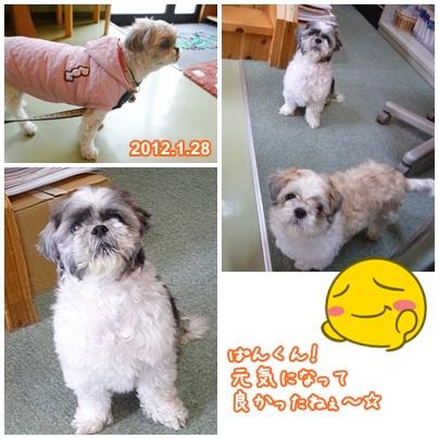 120128_ta_cho_04.jpg