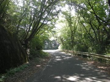 益子サイクリング6