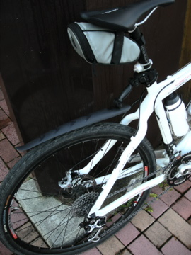 紅葉サイクリング(安ヶ森林道)3