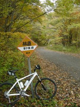 紅葉サイクリング(安ヶ森林道)12