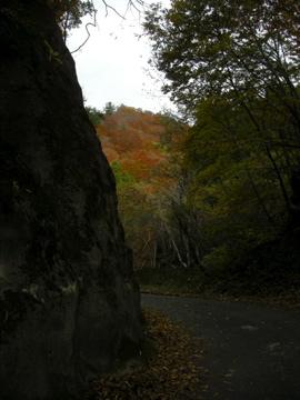 紅葉サイクリング(安ヶ森林道)14