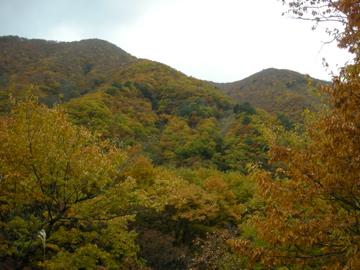 紅葉サイクリング(安ヶ森林道)43