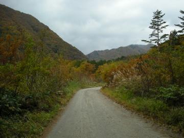 紅葉サイクリング(安ヶ森林道)45
