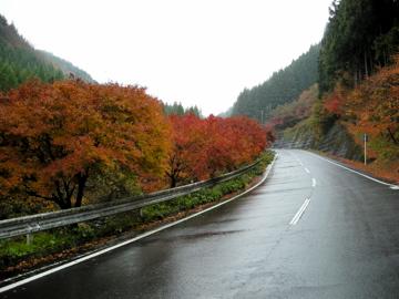 奥久慈サイクリング その3(八溝山)4