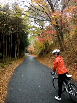 奥久慈サイクリング その4(八溝山)2