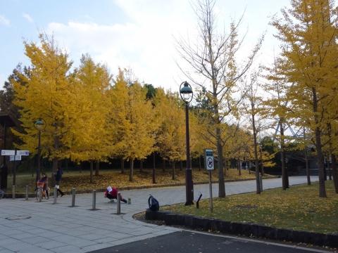 21葛西臨海公園