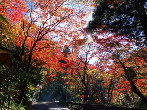 21東海道最高地点へ