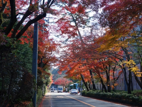 22東海道最高地点へ