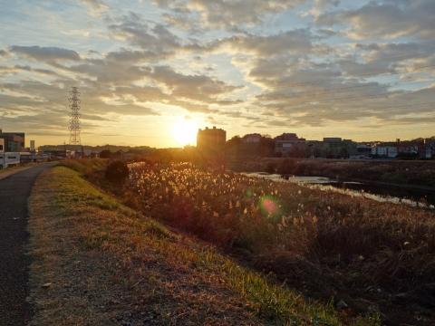 01早朝の鶴見川