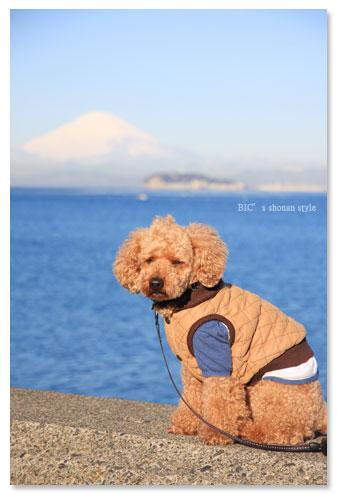 逗子湾,富士山