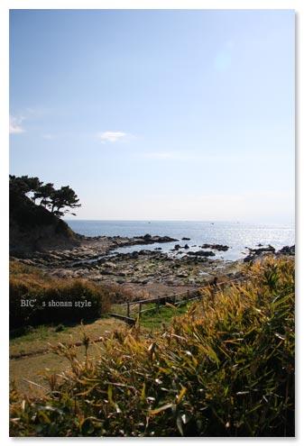 荒崎公園,三浦半島