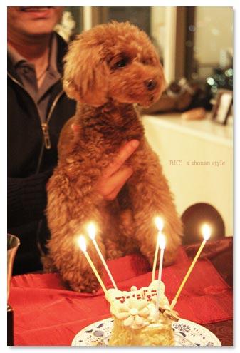アンジェラ家,お誕生日ケーキ