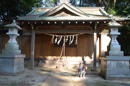 20131111宗像神社 吉田11