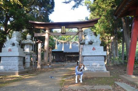 20131111宗像神社 岩戸02