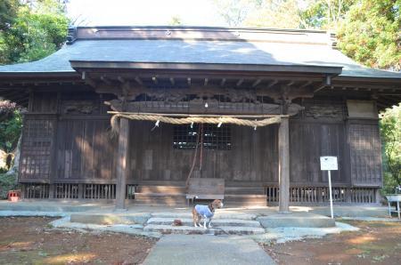 20131111宗像神社 岩戸10