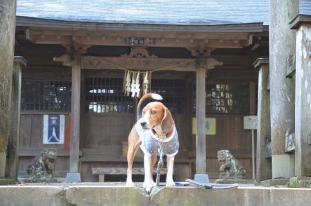 20131111宗像神社 師戸04