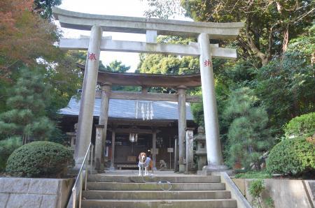20131111宗像神社 師戸02