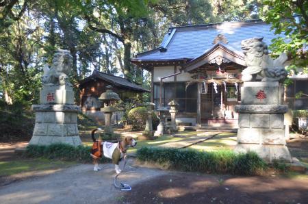 0131116宗像神社 平賀12