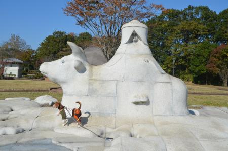 20131116松虫姫公園16