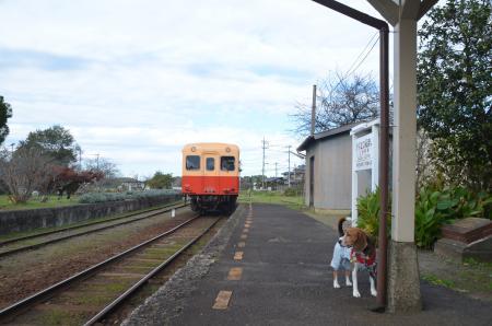 20131119小湊鉄道鶴舞駅23
