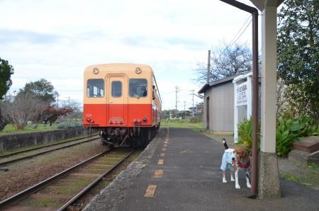 20131119小湊鉄道鶴舞駅22