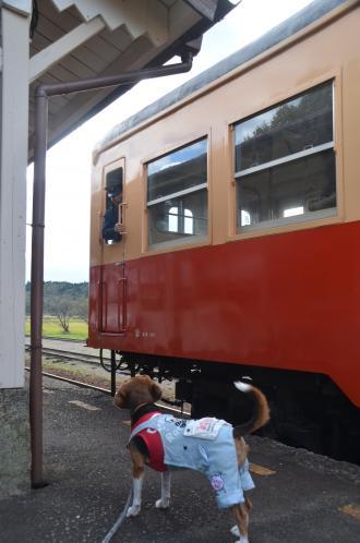 20131119小湊鉄道鶴舞駅21