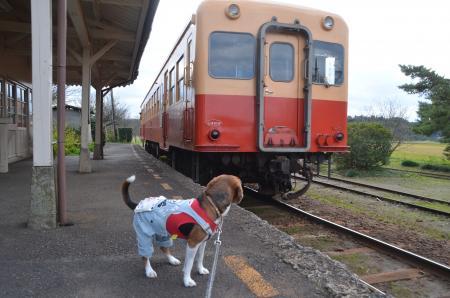 20131119小湊鉄道鶴舞駅20