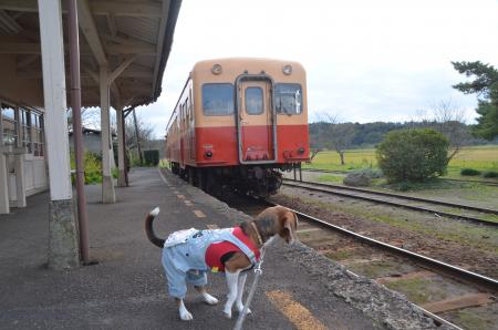20131119小湊鉄道鶴舞駅19