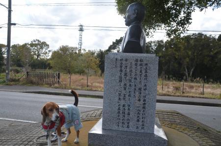 20131119鶴舞城址16