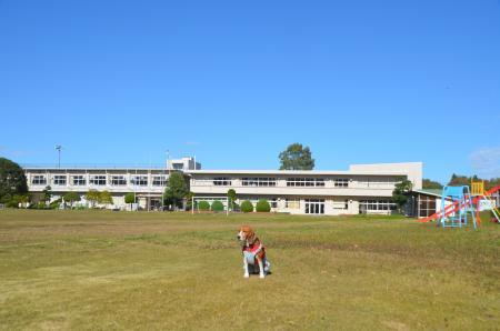 20131119高滝小学校14