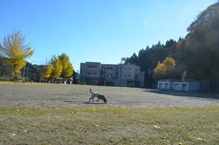 20131119富山小学校22