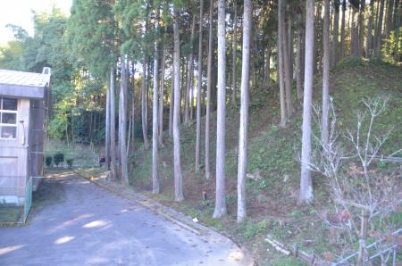 20131119富山小学校30