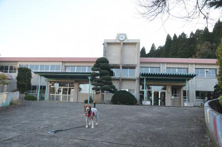 20131119白鳥小学校15