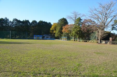 20131119白鳥小学校13