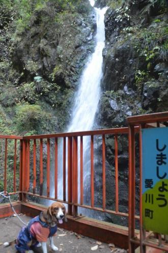 20131123塩川の滝09