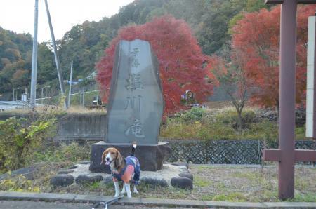 20131123塩川の滝13